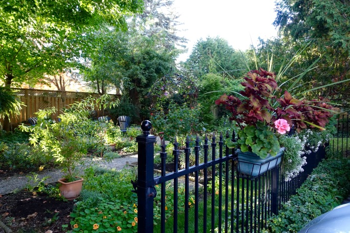 Garden behind the Old Rectory