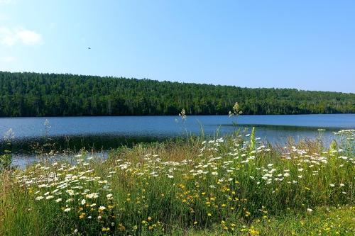 Lake Fanny Hooe
