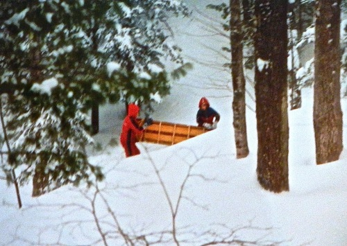 Sled Run in the woods