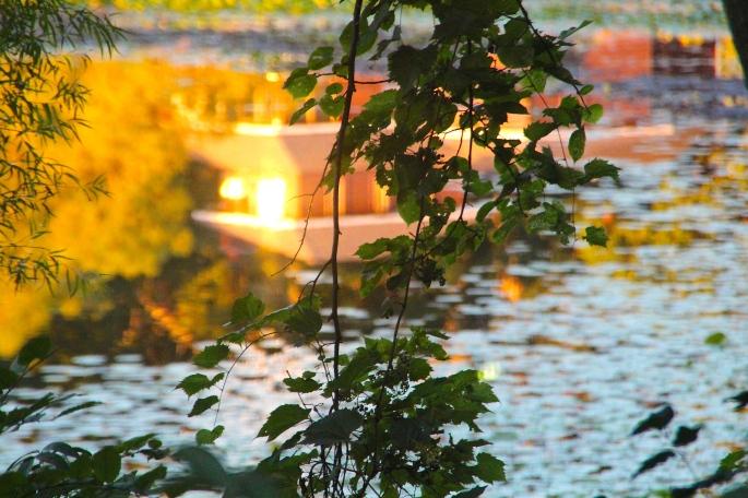 Sun reflectd on lake