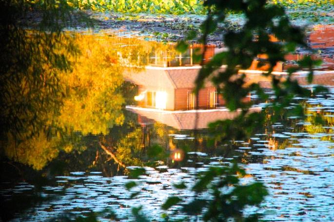 Sun reflected on lake 2