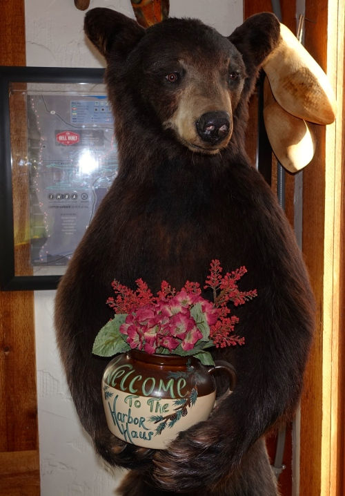 Welcome Bear at Harbor Haus, Copper Harbor