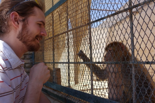 at a Tunisian Zoo 2
