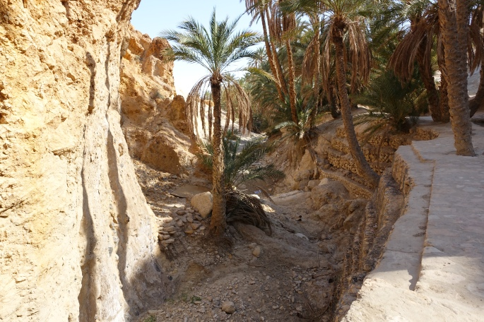 Dry Riverbed in Tunisia.