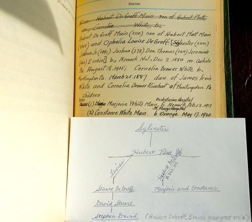 Genealogy Line