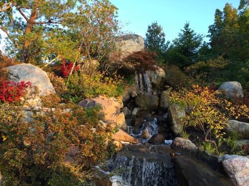 Japanese Garden at Meijer Gardens