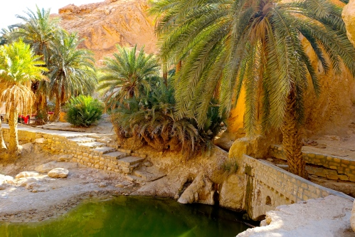 Oasis Pool. Tunisia