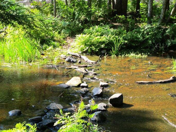 Path Across a Stream