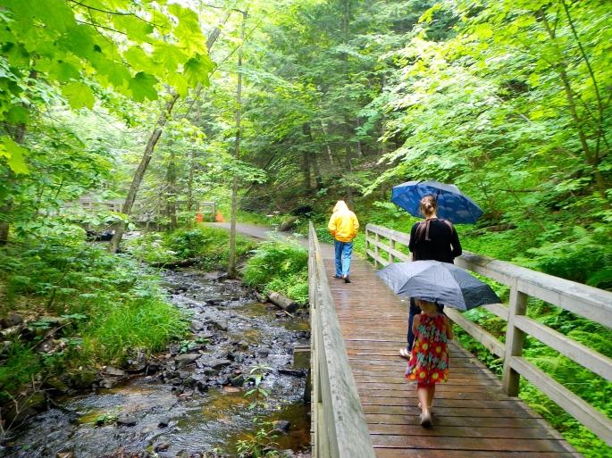 Rainy Day walk at Munising Falls 2