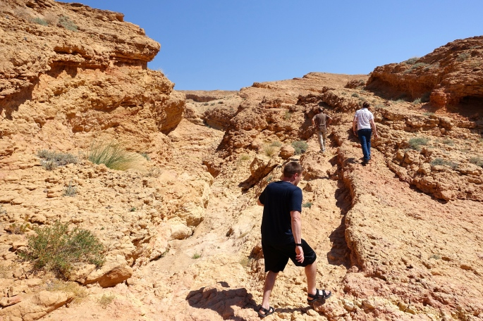 Sidi Bouhlel 5