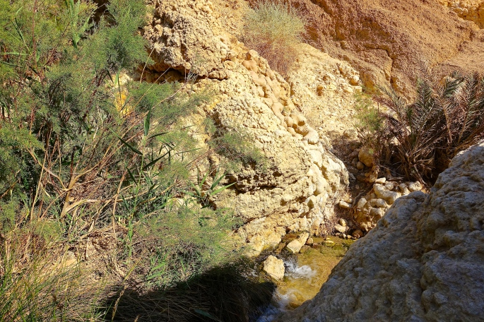 Stream descending from mountain in Tunisia