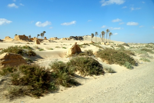Edge of Sahara Desert. Tunisia
