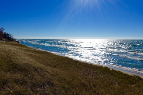 Lake Michigan dunes