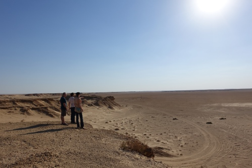 Surveying Sahara Desert