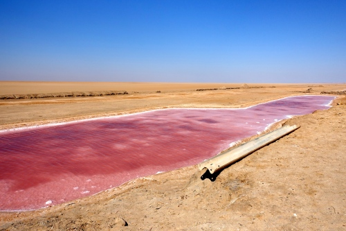 Chott el Djerid. Tunisia Pink River