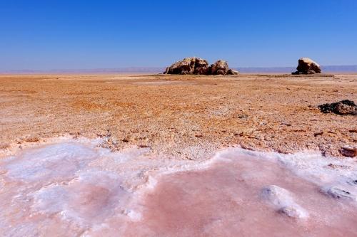 Pink Salt Chott el Djerid. Tunisia