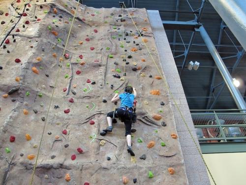 Climbing Up!jpg