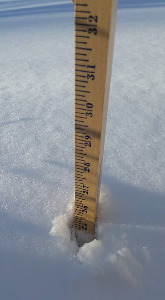 25.5 inches of snow in MD