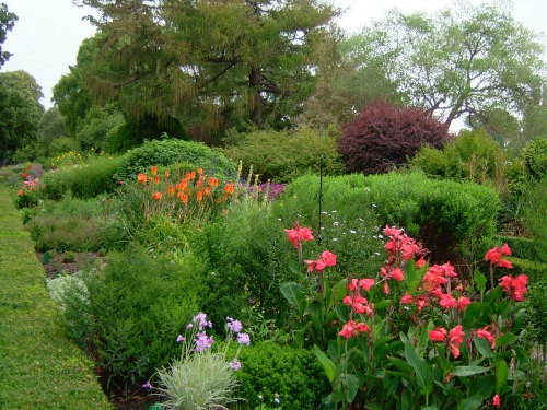 Botanical Garden in New Zealand