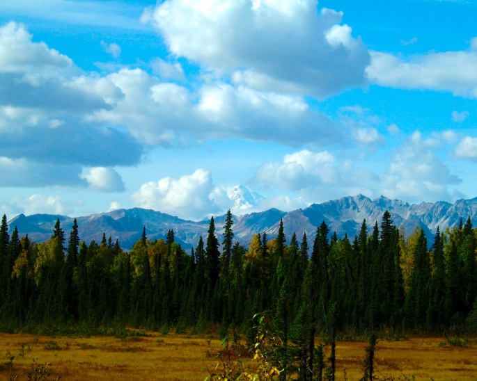 Denali in Distance