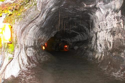 Entrance to Thurston Lava Tube. Hawaii