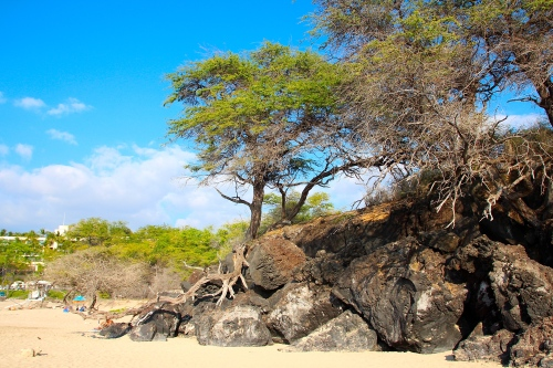 Hapuna Beach. Big Island 19