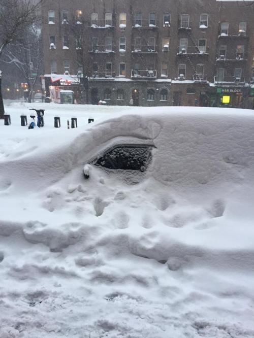 NYC Snow storm 01.24.16