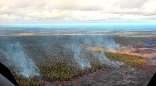 Trees burning from lava flow. Mt. Kilauea