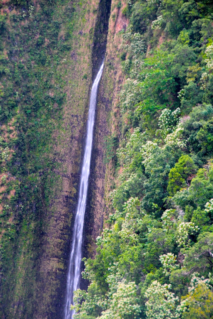 Waihilau Falls in the Waimanu Valley. Hawaii 2