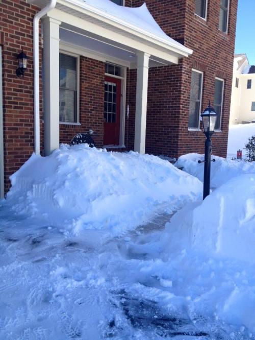 Washington D.C. Snow