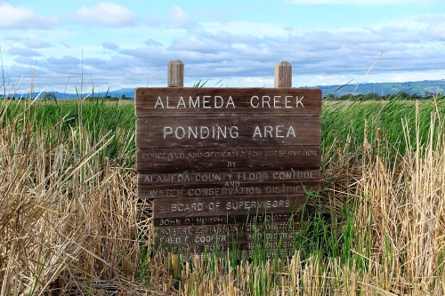 Alemeda Creek Ponding Area