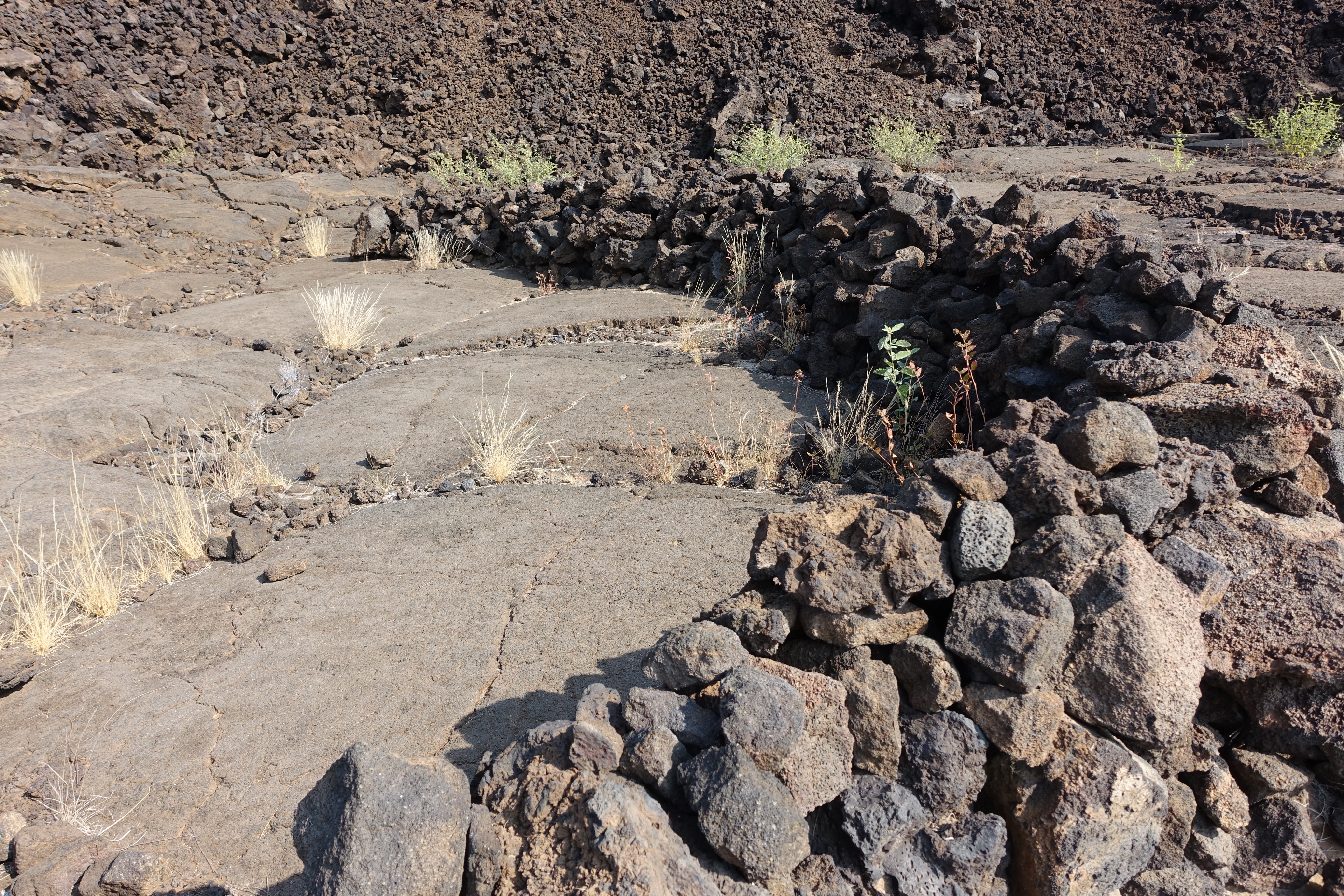 C-shaped rock shelter at Petroglyph Field
