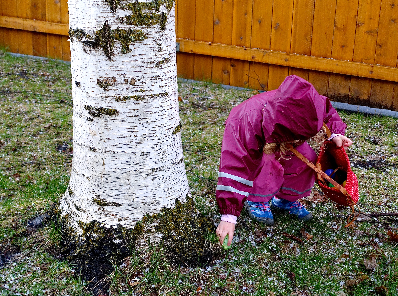 Easter egg hunt for little girl