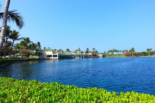 Fish pond by King's Shops. Waikoloa