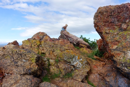 Greenstone and chert outcroppings at Coyote Hills Regional Park