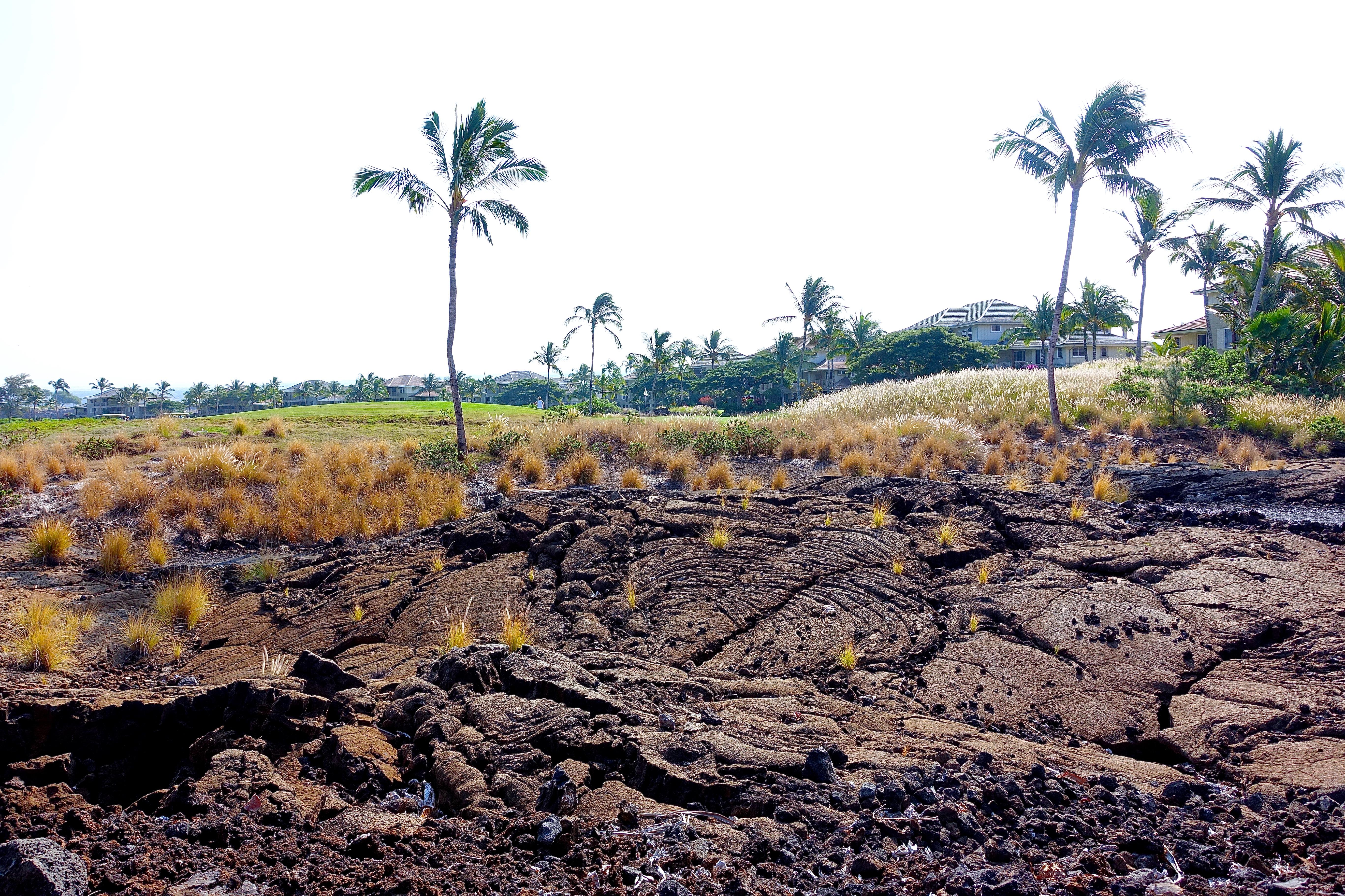 Loooking for Hawaiian petroglyphs. Waikoloa