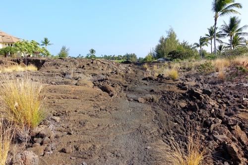 Near the beginning of Petroglyph field near Waikoloa