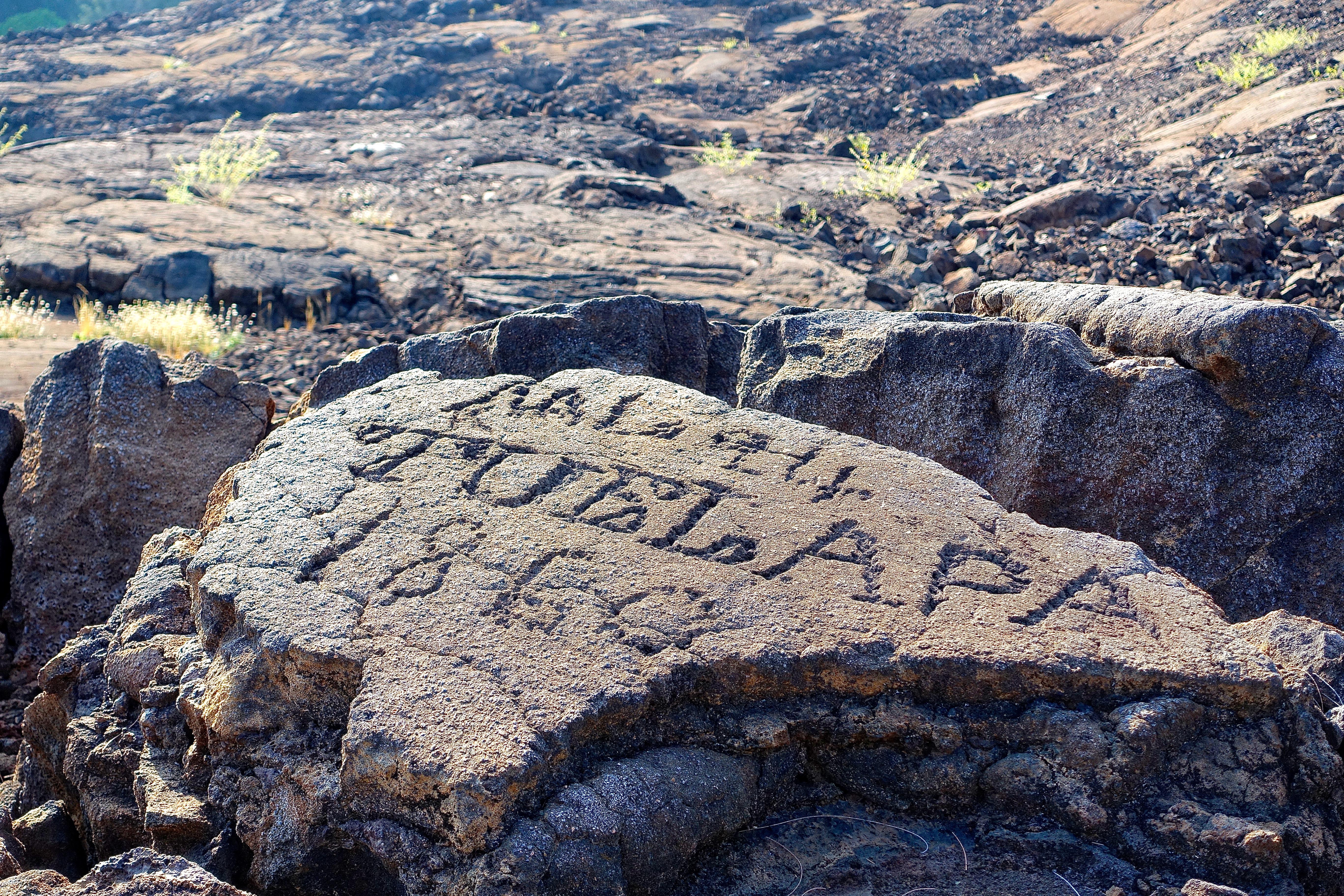 Petroglyph field near Waikoloa 8