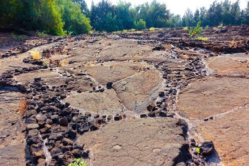 Waikoloa Petroglyphs in lava