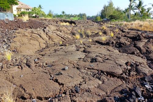 Where is the Petroglyph field near Waikoloa?