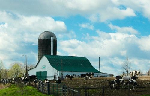 Farm. Springtime in Kentucky