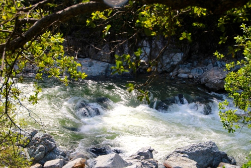 South Yuba River. Full with spring rains