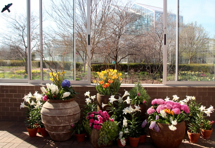 Spring Flower arrangements at Mejier Garden