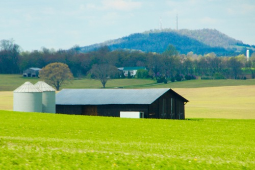 Springtime in Kentucky FArm