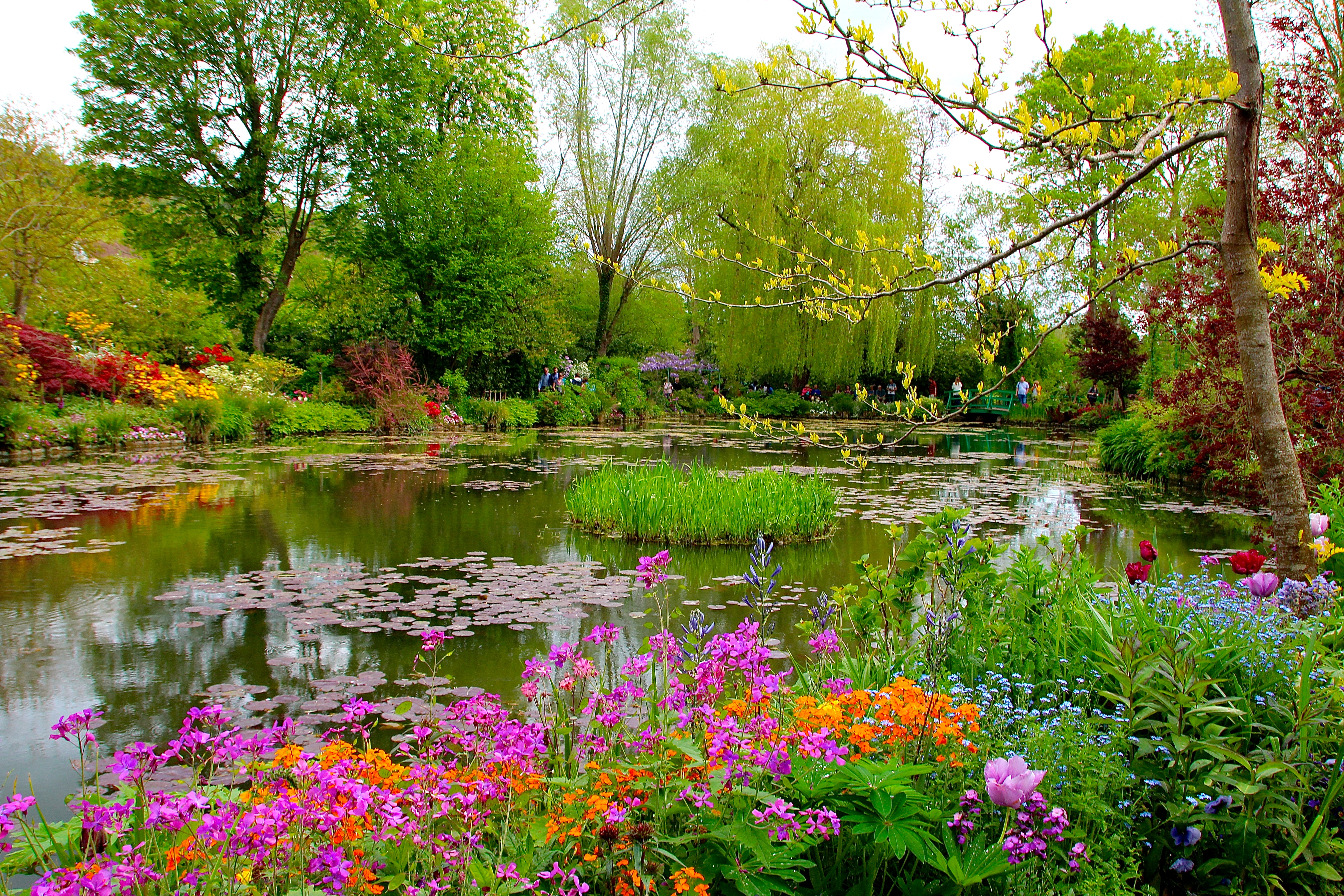 Gorgeous colors at Giverny. France. 05.09.16