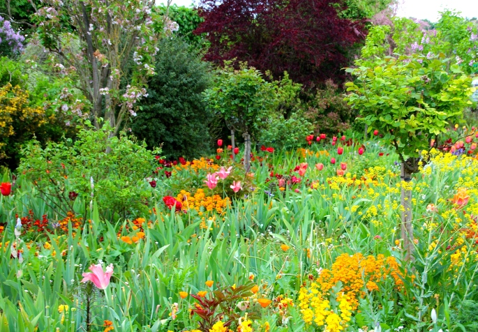 Spring flowers blooming at Giverny. France. 05.09.16. 11