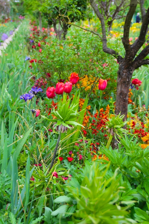Spring flowers blooming at Giverny. France. 05.09.16. 12