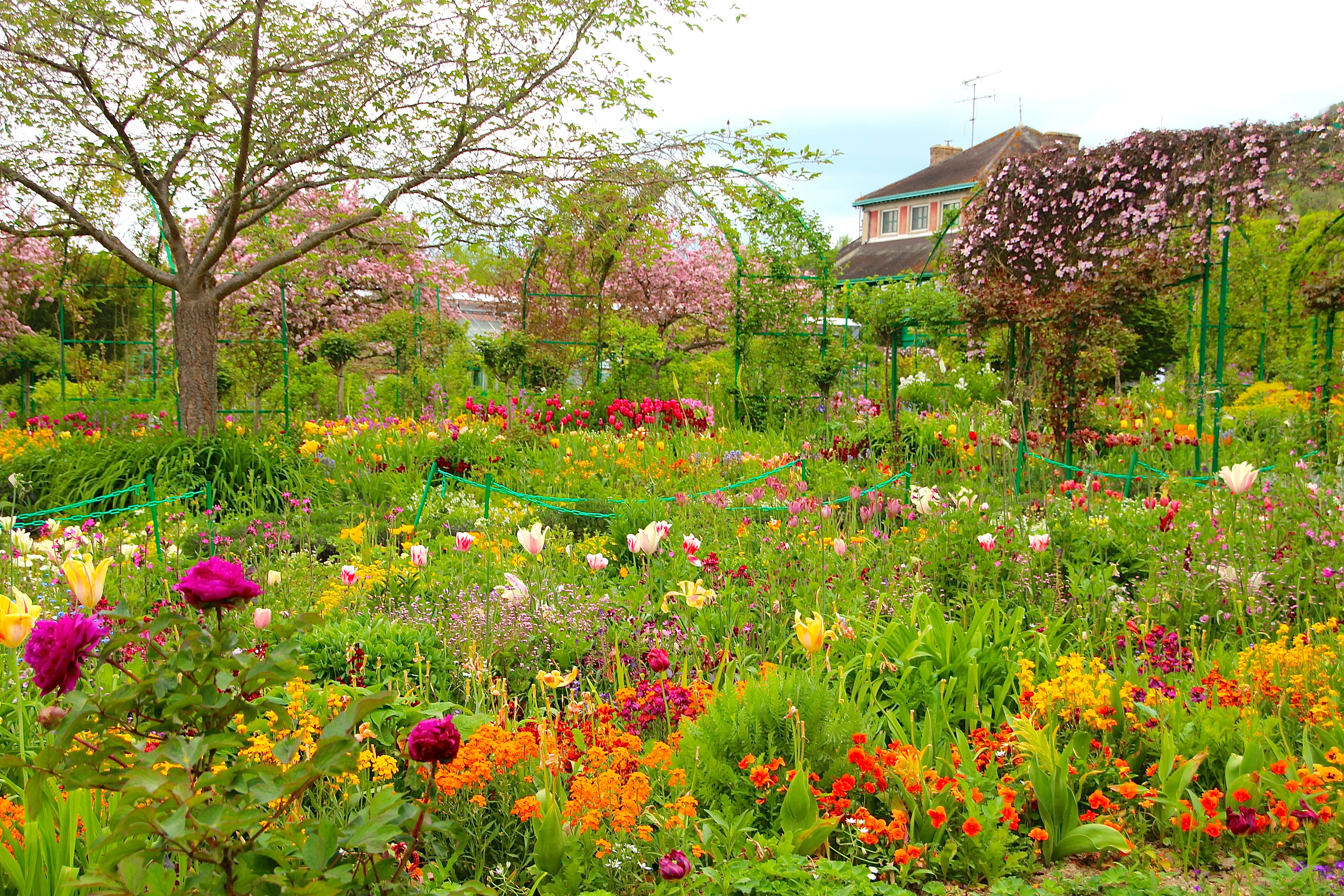 Spring flowers blooming at Giverny. France. 05.09.16. 2