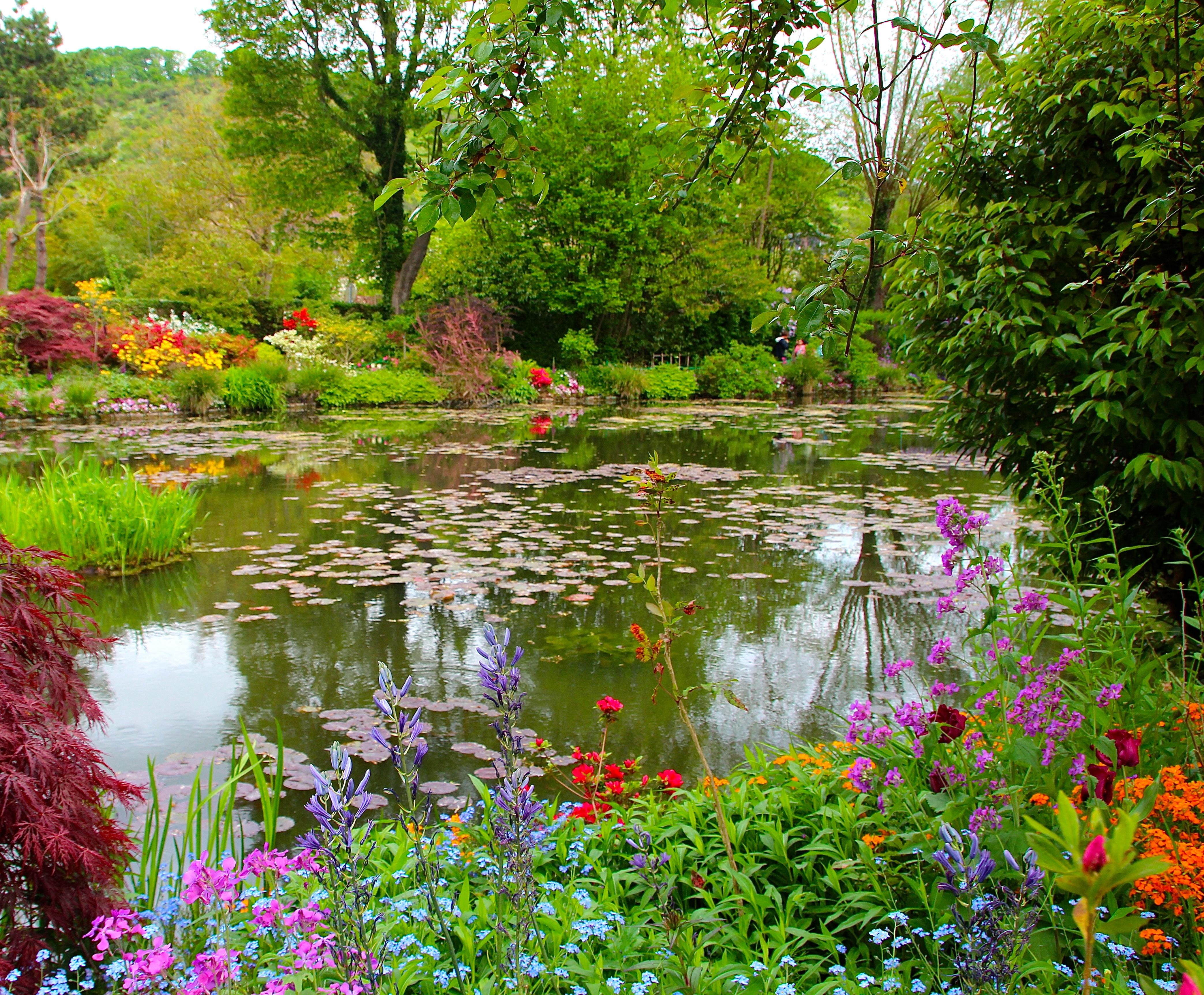 Spring flowers blooming at Giverny. France. 05.09.16. 23