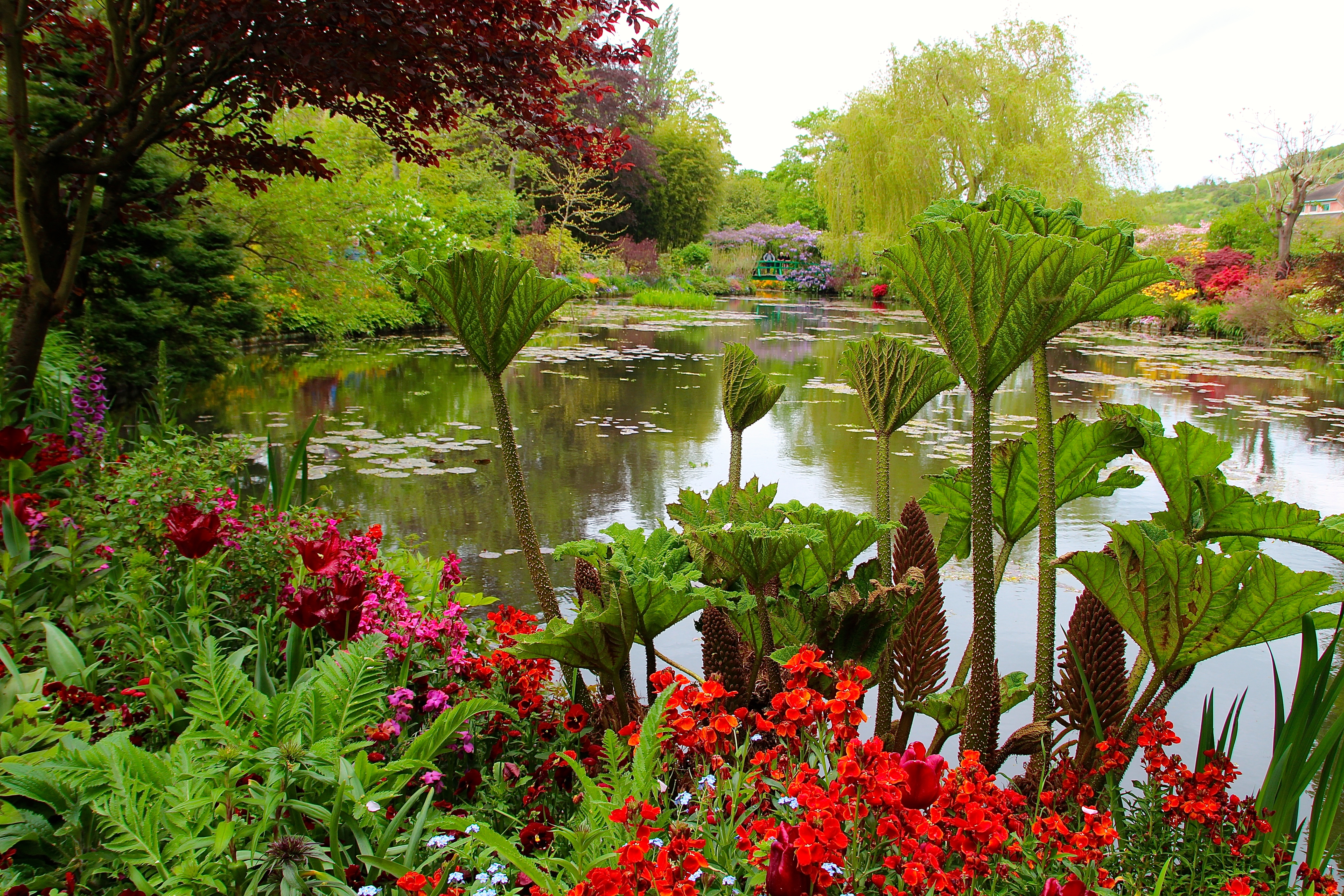 Spring flowers blooming at Giverny. France. 05.09.16. 26